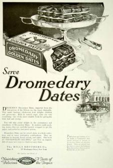 2013-10-4-dromedary-ad