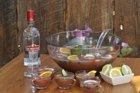 2013-11-29-vodka-punch