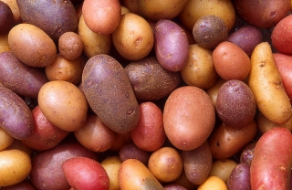 2013-6-2-potatoes-jpg