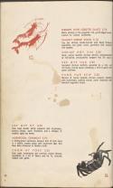2013-9-13-house-shrimp-full