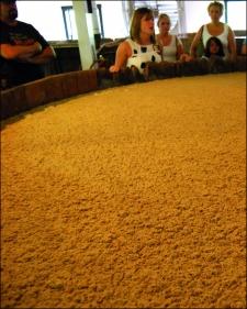 2014-10-26-mash-fermenting