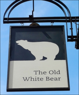 2014-12-5-the-old-white-bear