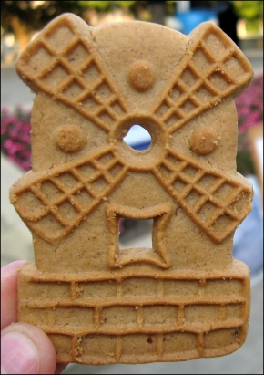 2014-9-12-windmill-cookie