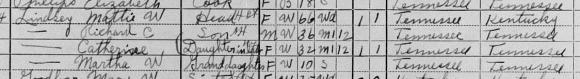 2013-12-15-1910-census-1