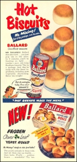 2014-1-25-ballard-advert