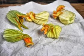 zucchiniblossoms-step3